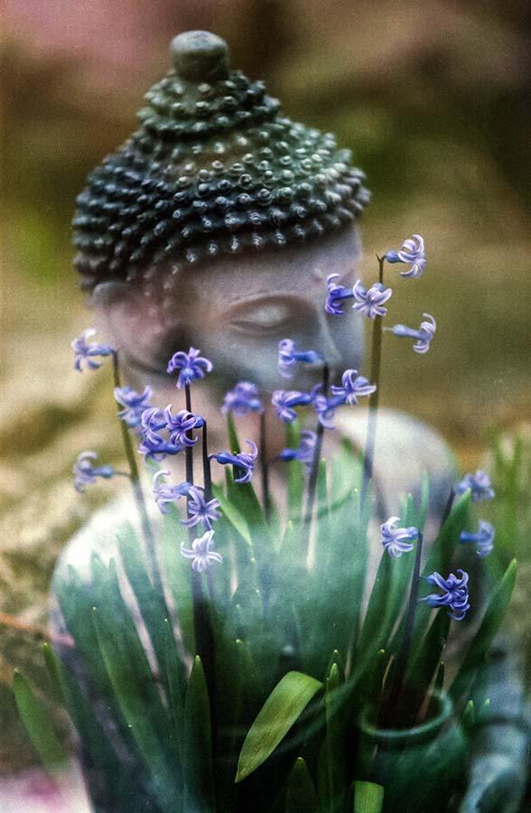 istoriya aromaterapii